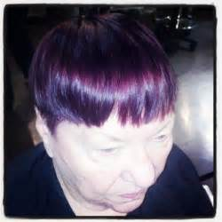 eggplant hair color purple eggplant hair color brown hairs