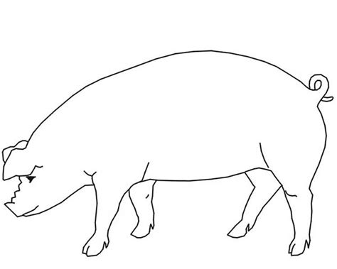 Pig Outline by Pig Outline Coloring Page Pig Outline Coloring Page Coloring Sky