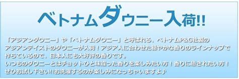 Parfum Ichikawa 楽天市場 アジアンダウニー8種類お試しセット 送料無料 ダウニー柔軟剤 新作タイムレス入り福袋 大量注文可