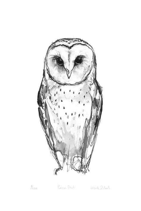 printable barn owl pictures barn owl print birds owls pinterest