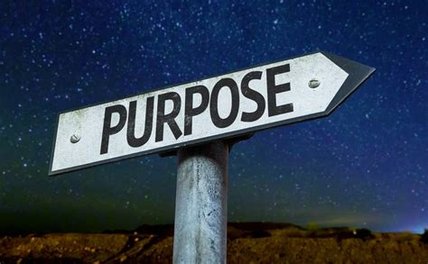 purpose of finding your s purpose