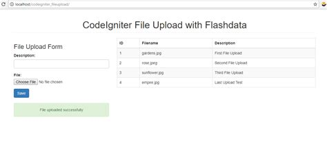 codeigniter tutorial upload image codeigniter file upload with flashdata free source code