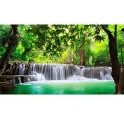 HD Hintergrundbilder Wald Wasserfall Wasser Wasserstrahl