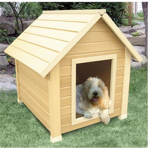 pictures of house dogs pictures of dog houses give new inspirations when selecting the best house for your
