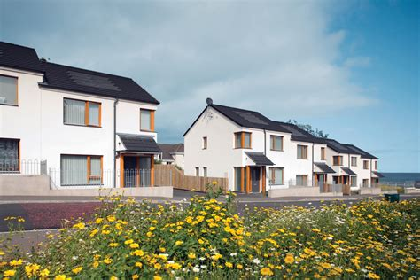 too few houses being built in northern ireland fmb claim the growth of hemp lime as a natural building method the
