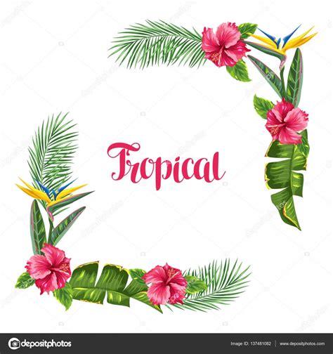 cornice con fiori cornice con fiori e foglie tropicali rami di palme