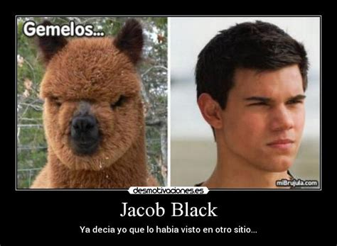 Jacob Meme - jacob black twilight memes