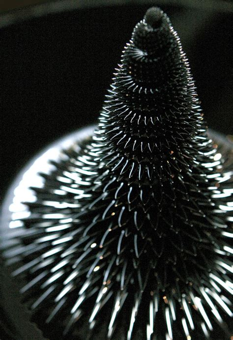 pattern formation in magnetic fluids morpho tower ferrofluid artwork