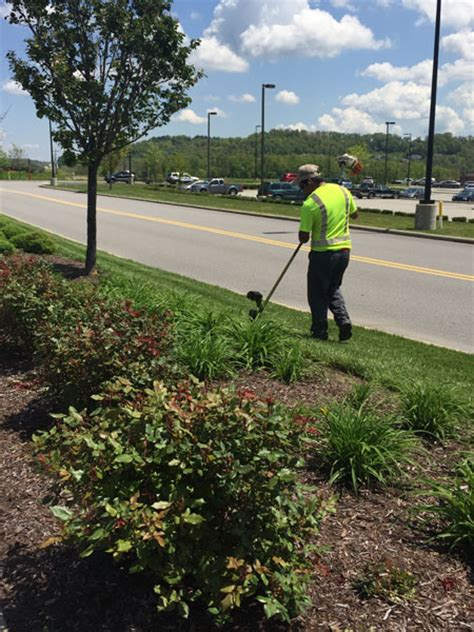 commercial lawn maintenance landscape maintenance