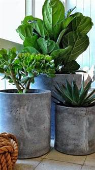 Concrete Planters by How To Make Your Own Concrete Planter The Owner Builder