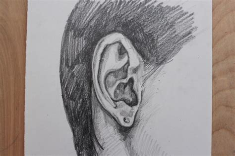 Drawing Ears by Pics For Gt Simple Ear Sketch