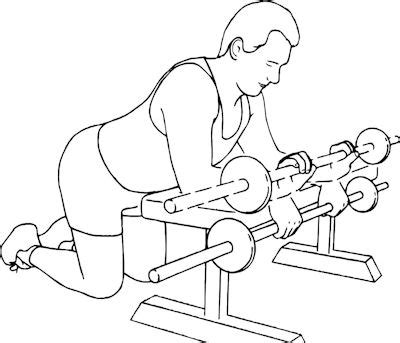 reverse wrist curl over bench sports and fitness exercises weight training for