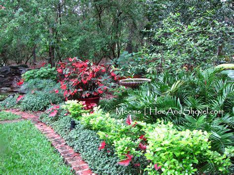 hoe and shovel a florida moss garden