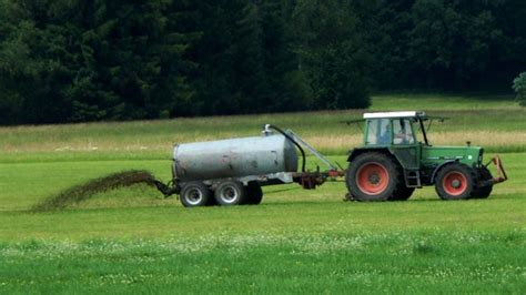 associazione mantovana allevatori l associazione mantovana allevatori al lavoro per la borsa
