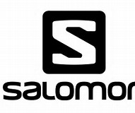Image result for Salomon Group