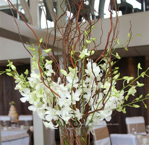 centerpieces with orchids orchid wedding centerpieces