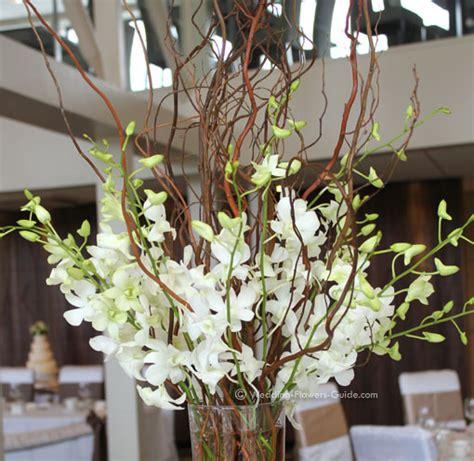 orchids wedding centerpieces orchid wedding centerpieces