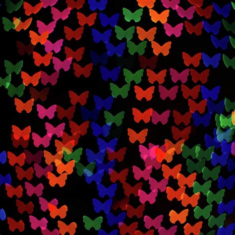 multi colored butterfly shaped lights photograph by lotus