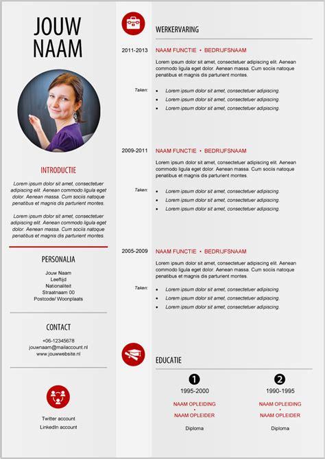 Cv Moderne by Moderne Cv Format 209 Mooicv Cv Cv Format