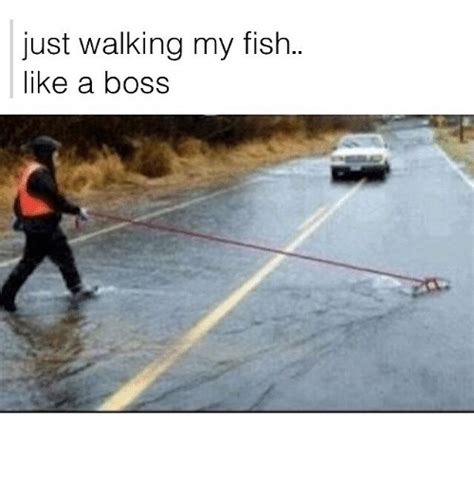Fishing For Likes Meme - funny fish memes of 2017 on sizzle watered