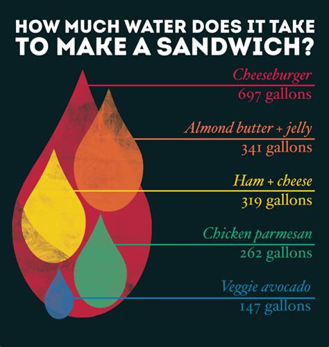 how does it take to crate a how much water does it take to make your sandwich graphic here scoopnest