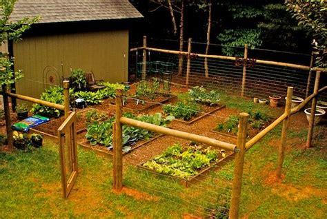 fence for vegetable garden best 25 vegetable garden fences ideas on