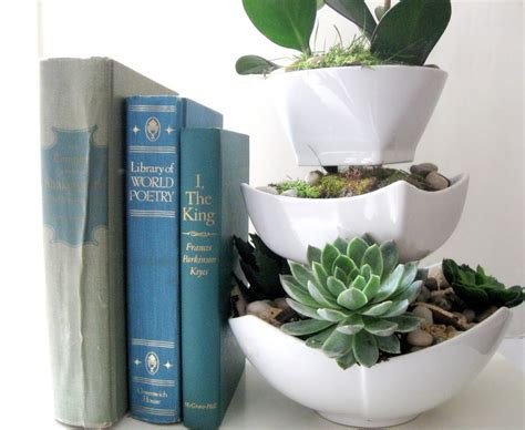succulent planter diy 17 diy s for turning succulent plants into wonderful decor