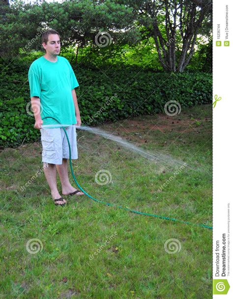 man watering  grass lawn stock images image
