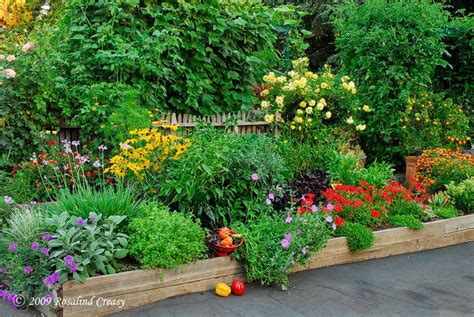 Edible Flower Garden 346 Best Images About Garden On Raised Beds Delphiniums And Landscapes