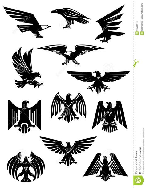 eagle or falcon aquila or hawk heraldic badge stock