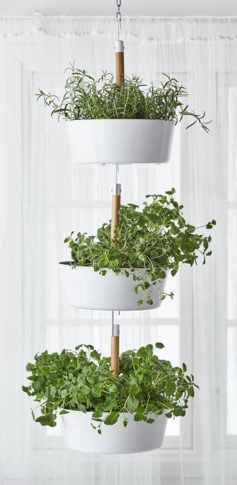 hanging window herb garden bittergurka hanging planter white vertical herb gardens
