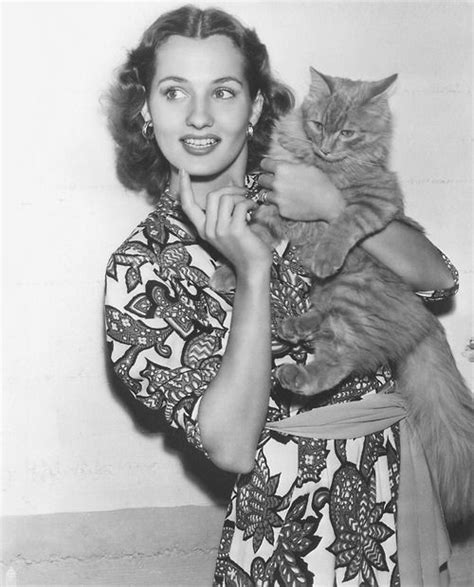 brenda marshall movies 85 best images about brenda marshall on pinterest posts