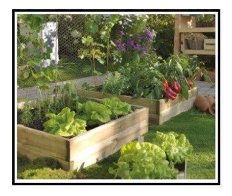 creare un orto in giardino coffeenews it
