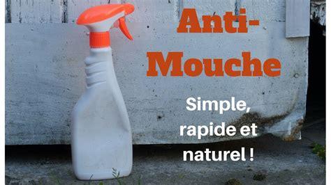 Anti Mouche Efficace 1387 by Spray Anti Mouche Facile Simple Efficace Et Naturel