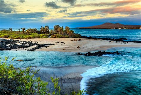 galapagos best islands galapagos islands escape real gap experience