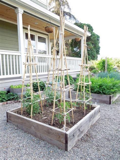 spectacular diy bamboo projects   garden