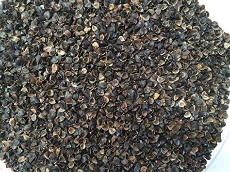 Beans72 Buckwheat Pillow by Beans72 Organic Buckwheat Hulls 5 Pounds Import It All