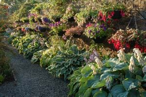 Helpful Links To Interesting Places To Visit And Things To Winsford Walled Garden