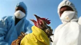 oklahoma farm report south korea raises crisis warning