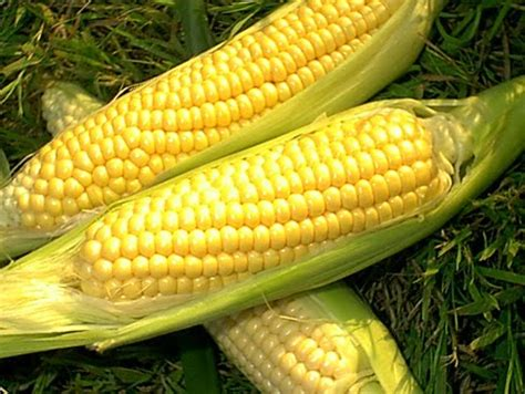 Corn L by One Drop One Sweet Corn Nutrition Facts