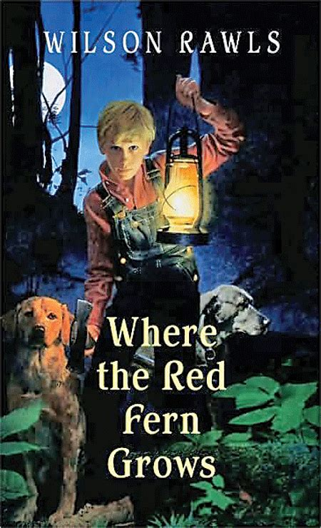 book report on where the fern grows 27 hilariously honest titles for popular books thought