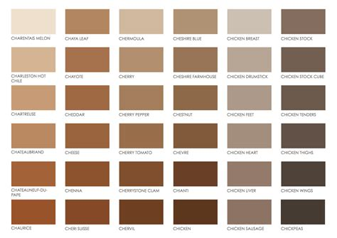 brown pantone color chart color brown