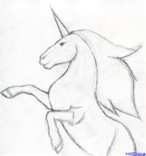 draw simple unicorn head pencil drawing collection