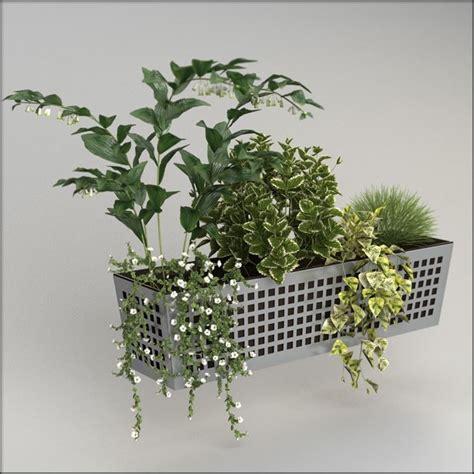 vasi balcone coltivare sul balcone piante da terrazzo piante da balcone