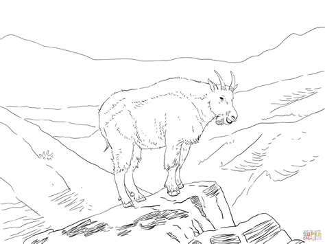 coloring pages mountain goat north america mountain goat coloring online super coloring