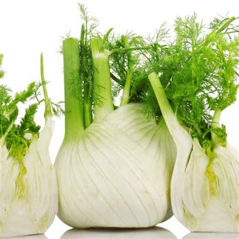 alimenti anti gonfiore addominale nutrizione pagina 7