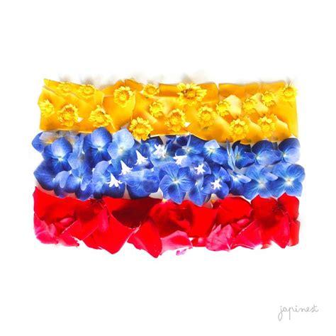 pabellon tricolor letra best 25 bandera venezuela ideas on pinterest