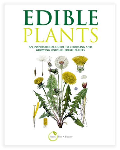 Books From Wwf Flowers Of The Forest by New Edible Gardening Books