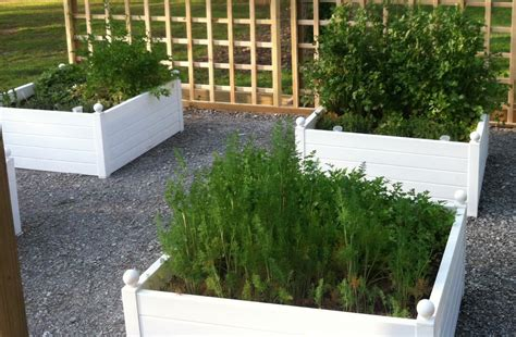 self watering raised bed self watering planter box why i love my terrazza planters