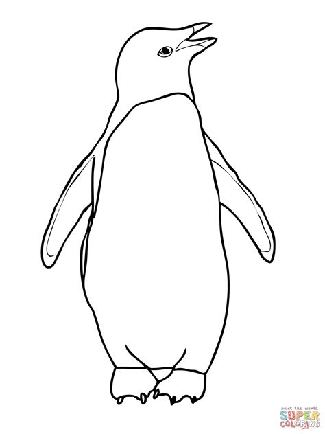 adelie penguin coloring page free printable coloring pages